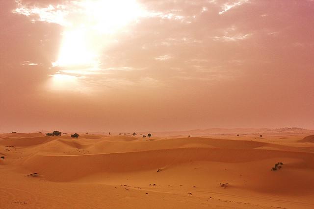 UAE desert sands