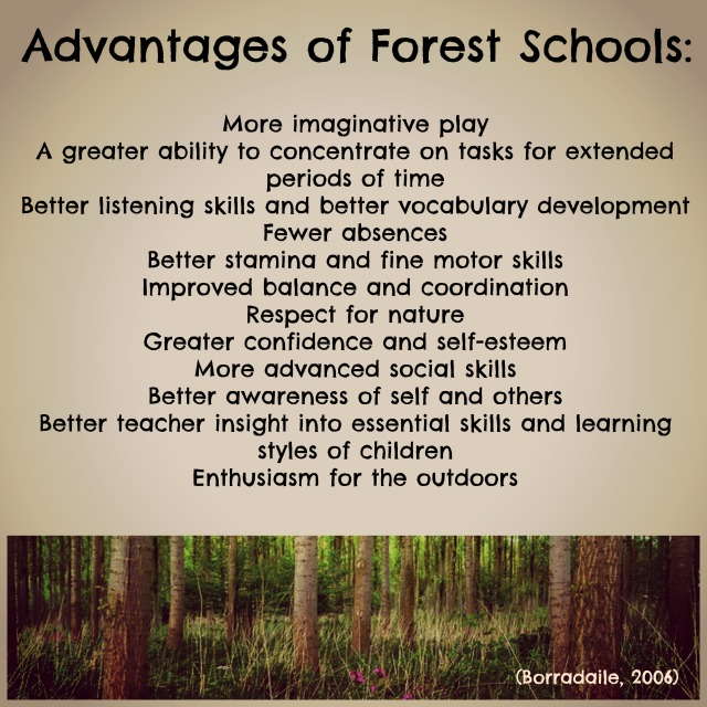 advantages of forest schools