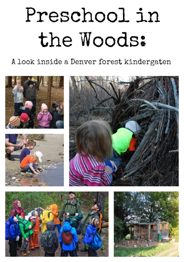 Preschool in the Woods: A look inside a Denver forest kindergarten