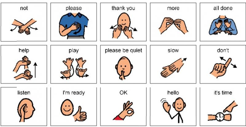 Sign Language best subjects to learn